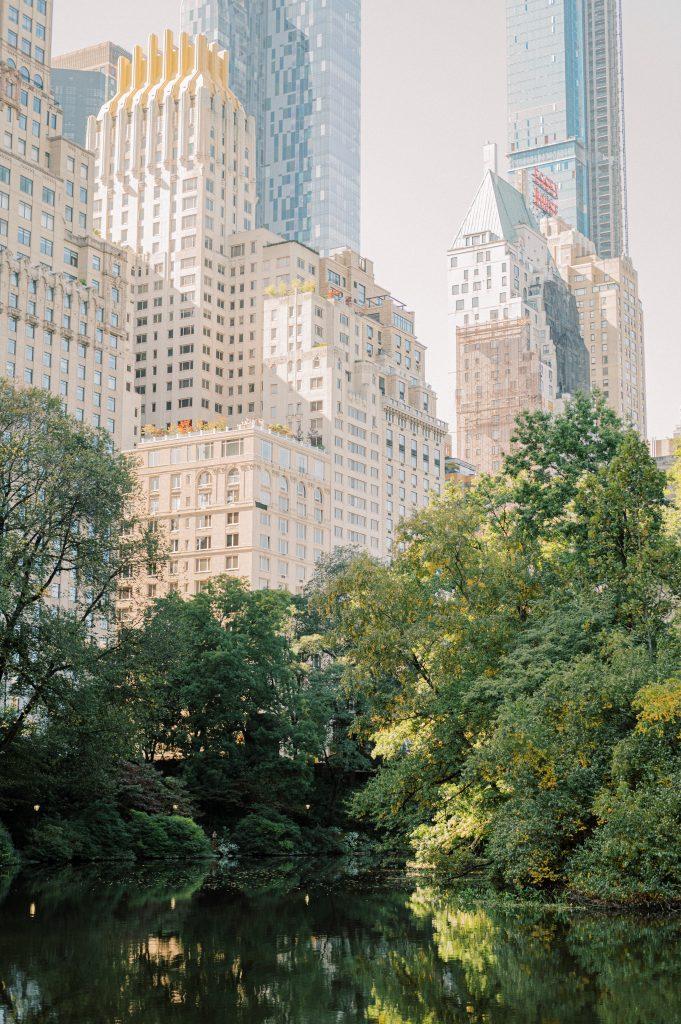 Central Park New York City taken by Philadelphia Wedding Photographer Matt Genders